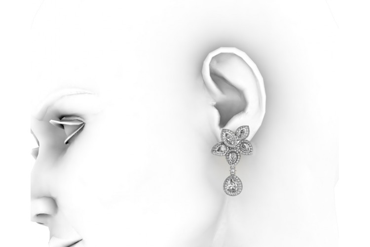 Aadita Exquisite Zircon Earrings
